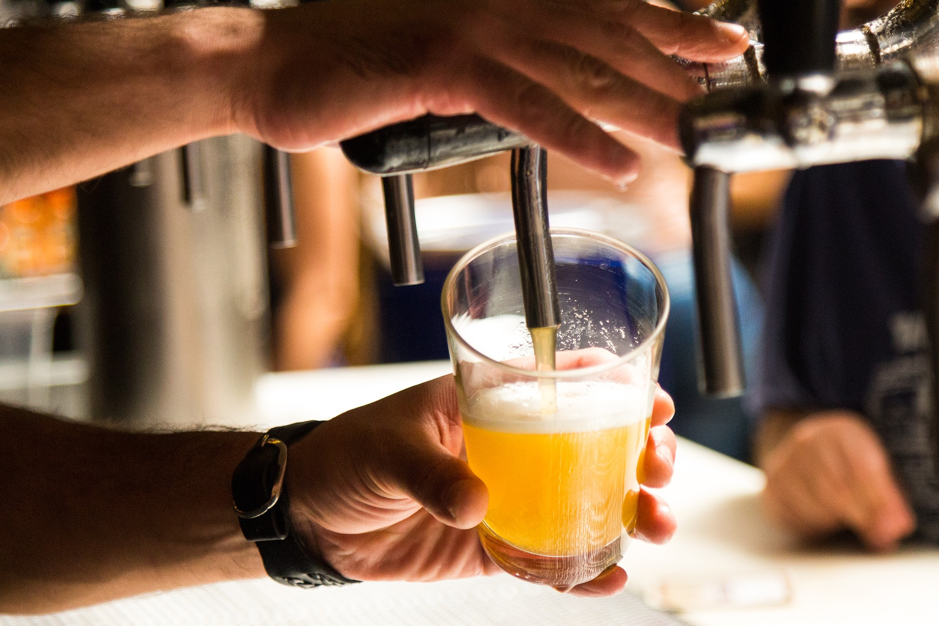 Asheville Brew-Hoppers Beer Guide and Asheville Beer