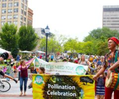 Organicfest parade-goers marching through downtown Asheville.