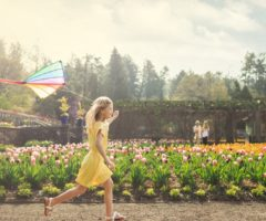 A child in a yellow dress with a kite running through the blooming flowers at Biltmore.