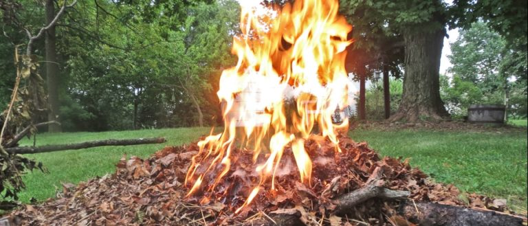 A pile of leaves and debris on fire during a controlled burn.
